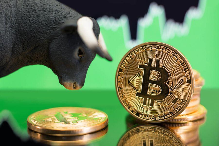 avalon 7 bitcoin miner btc de tranzacționare site- uri web